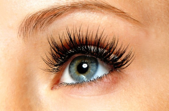 eyelash extensions in brainerd