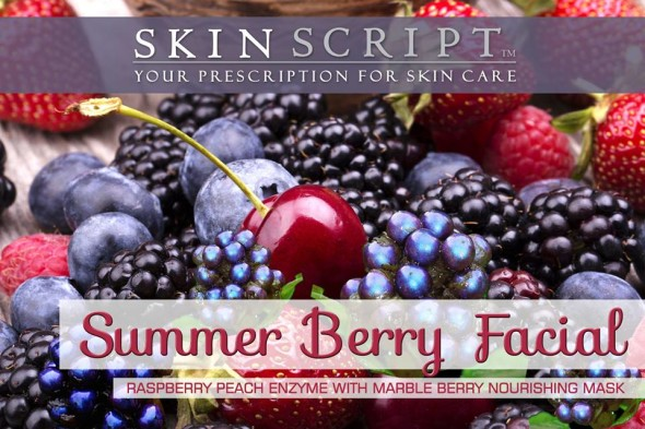 skin script berry facial in brainerd mn