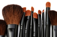 makeup brushes my site