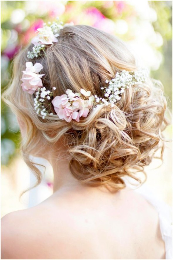 babys breath blog for captivating beauty