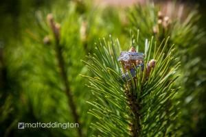 Pine Peaks Event Center-Cross Lake by Matt Addington Photography